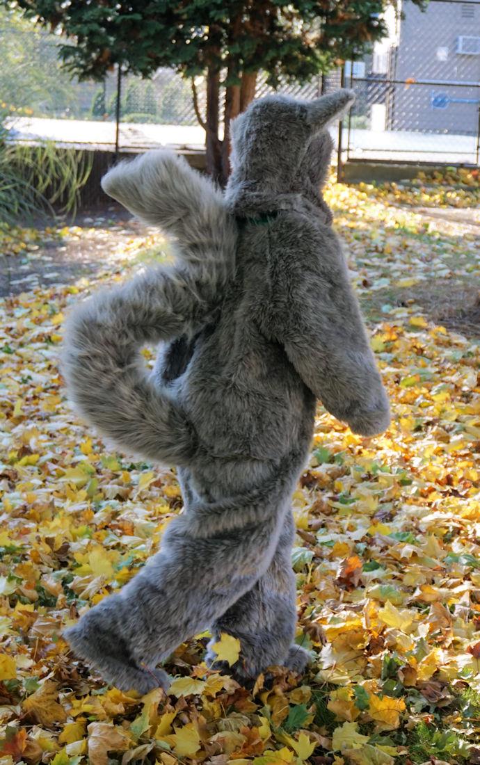 Fuzzy gray squirrel costume