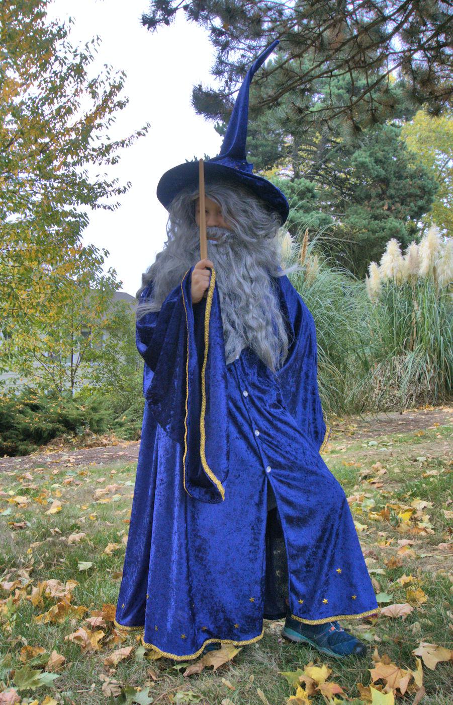 Blue velvet wizard costume with stars